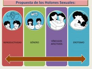 el-modelo-de-los-cuatro-holones-sexuales-7-728